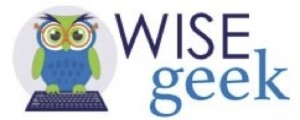 wise geek logo